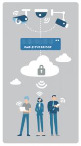 EAGLE EYE BRIDGE